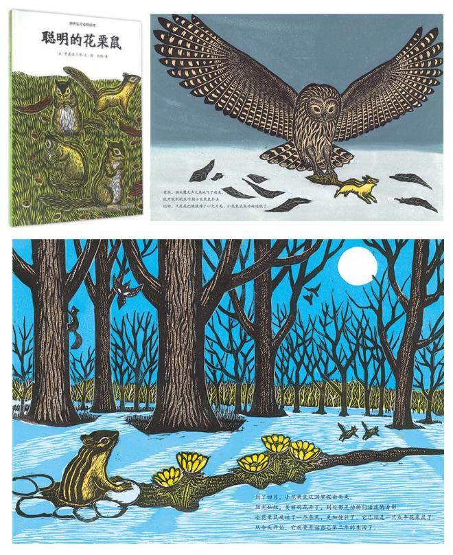 《感悟生命动物绘本》之《聪明的花栗鼠》内页